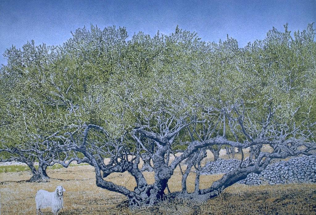 De litho 'Goat and Olive Tree'. Een exemplaar is te koop.