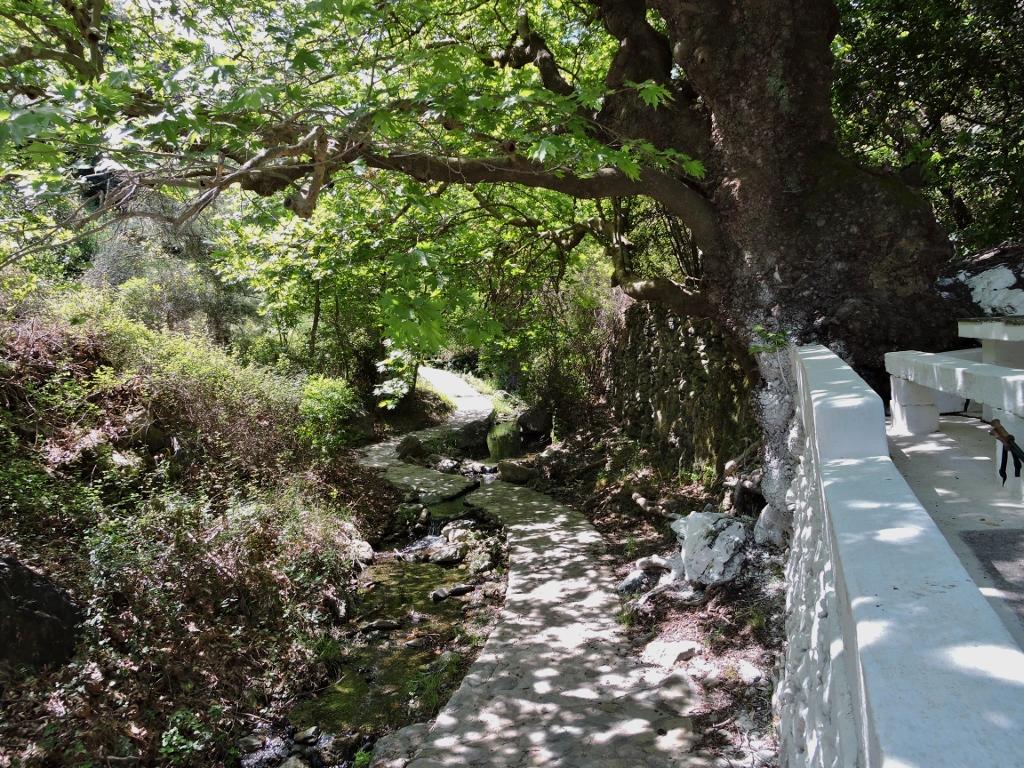 Bij de bron Portkolia - sinaasappelen - in Karavas. Hier zijn nog twee natuurlijk waterbronnen te vinden de bekendste voor toeristen is Amirali en voor de eilandbewoners Keramari. De foto is van Christina.