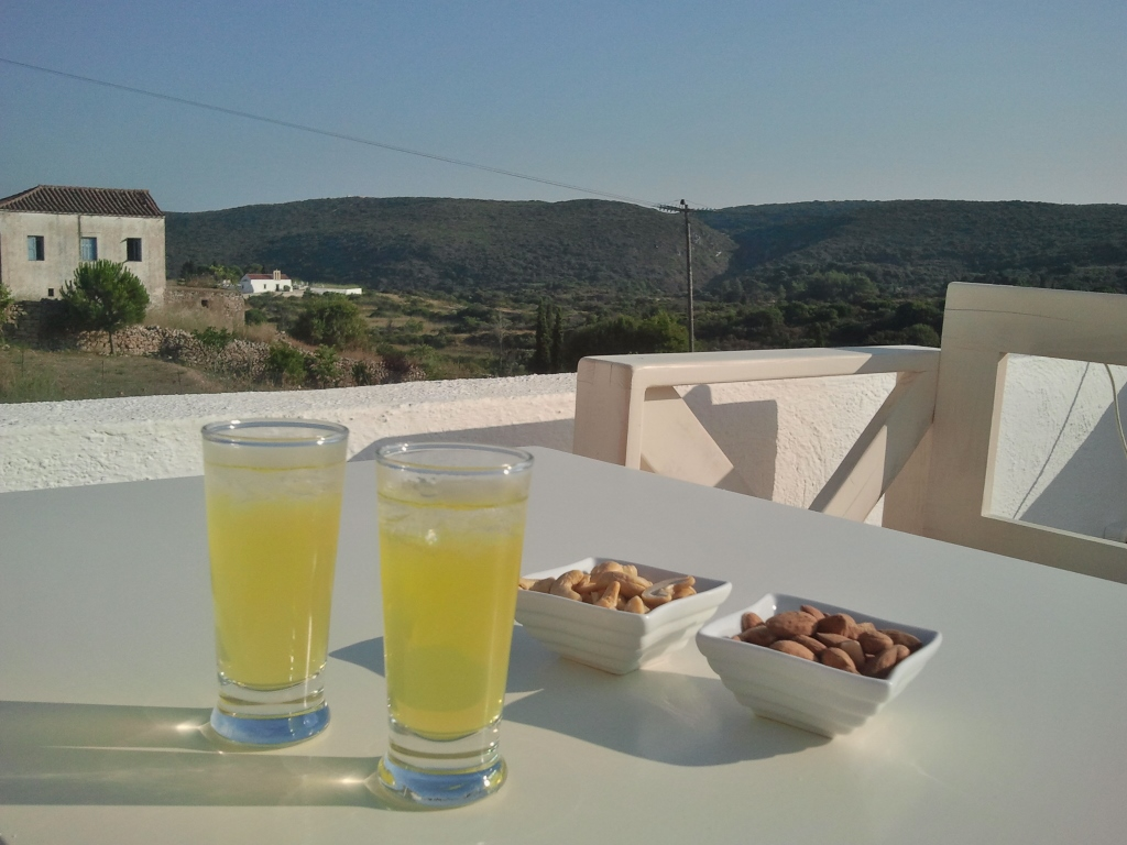 Een nieuw cafeetje in Frilingianika  'Zaxár'. Een koud glaasje wijn hadden ze nog niet in huis, dan maar aan de limoncello. Jiamas!